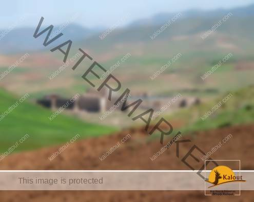 General View of Takht-e Soleyman, an Iranian Archaeological Site