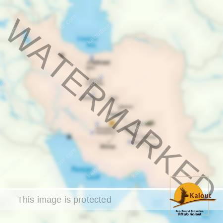 Iran Historical Tour