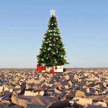 Voyages des vacances de Noël