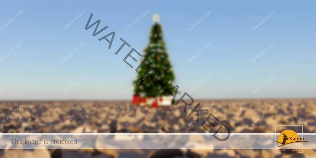 Christmas Tree In The Desert.Multinational Tour Lut Desert Christmas Holiday Kalouttour