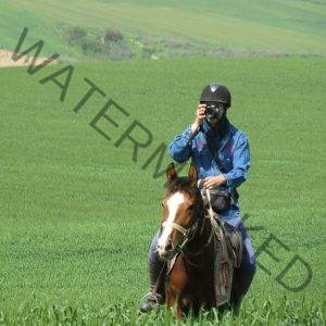 Golestan Horseback Riding