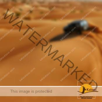 Iran Safari Tour