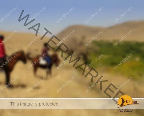 Hamedan Horseback riding