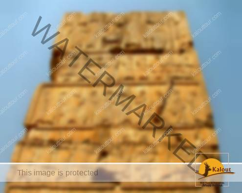 Persian & Median Guards below the Xerxes Throne on Persepolis Walls