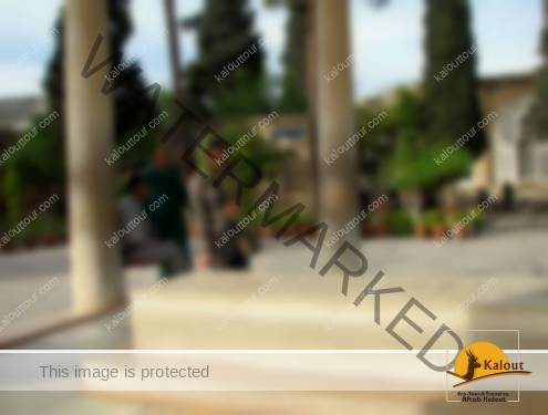 Iranian woman praying at Hafez tomb